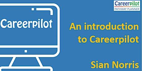 Introduction to Careerpilot tickets