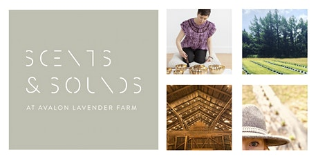 Scents + Sounds at Avalon Lavender Farm tickets