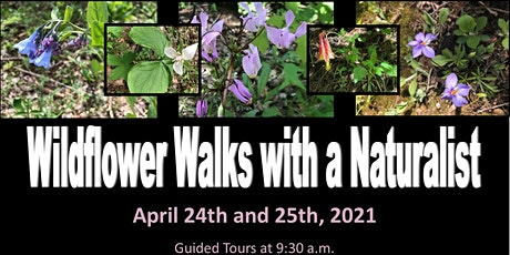 Spring Wildflower Weekend at Starved Rock State Park tickets
