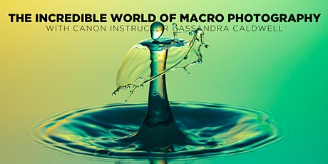 The Incredible World of Macro Photography w/ Cassandra Caldwell (Online) tickets