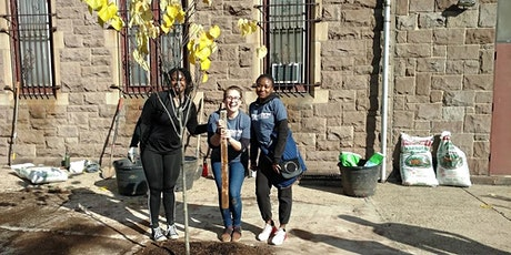 Earth Month in Newark, New Jersey: Plant Trees with One Tree Planted! tickets