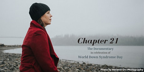 Chapter 21 - Documentary tickets