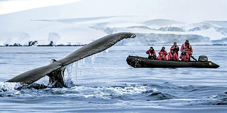 """Antarctica 