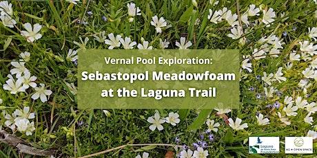 Vernal Pool Exploration: Sebastopol Meadowfoam at the Laguna Trail tickets
