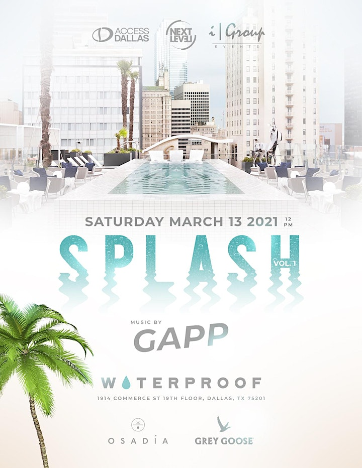 SPLASH : St Patrick's Day Rooftop Pool Party at the Statler image