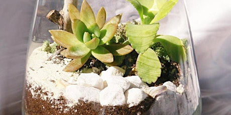 Desert Terrarium Workshop tickets