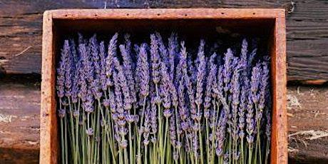 Spring/Summer Lavender & Bay wreath tickets