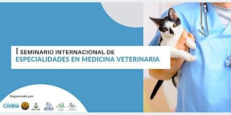 PRIMER SEMINARIO INTERNACIONAL DE ESPECIALIDADES EN MEDICINA VETERINARIA entradas
