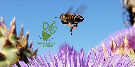 DIG ONLINE: Empowering Our Pollinators - Plants for Pollinators tickets
