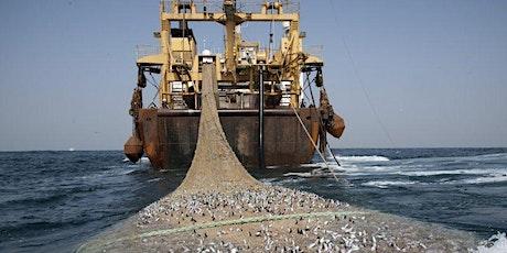 Leere Meere? Weltweite Fischerei und die Folgen Tickets