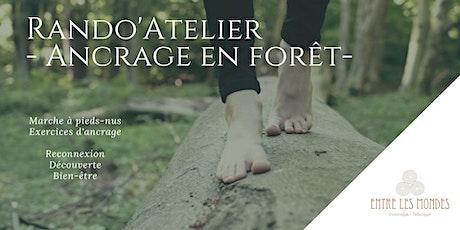 Ancrage en forêt - Rando Atelier billets