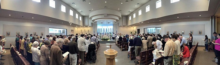 The Ninth Sunday after Pentecost image