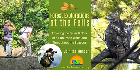 Spring Forest Explorations tickets
