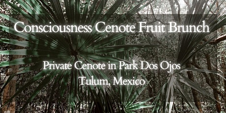 Consciousness Cenote Fruit Brunch tickets