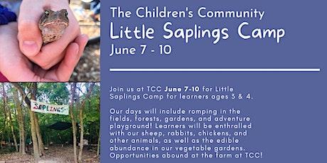 TCC Little Saplings Camp tickets