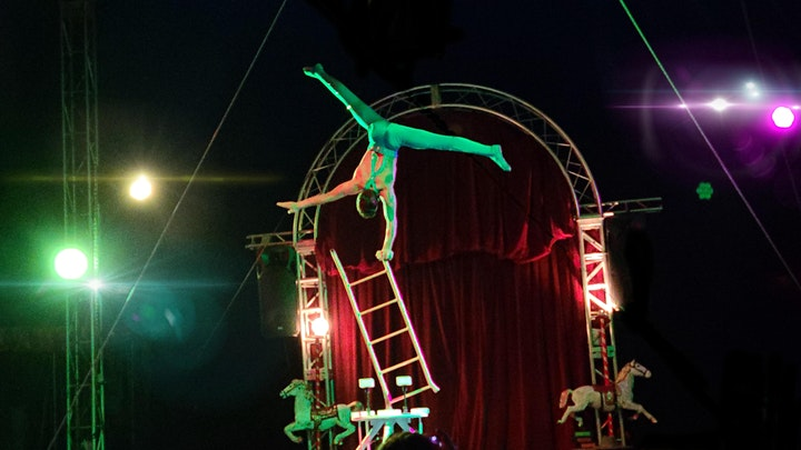 Circus Lena in Holiday image