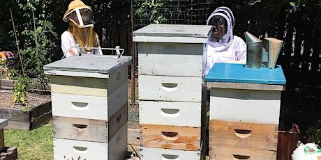 Introduction to Backyard Beekeeping tickets
