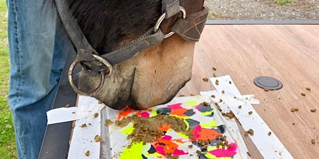 Painting with Ponies (for adults) tickets