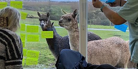 Make Alpacas Your Business tickets