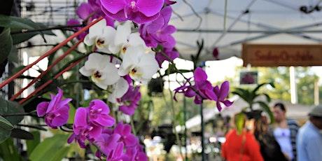 27th Mount Dora Plant and Garden Fair tickets