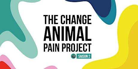 Episode 8 : le chat, douleurs arthrosiques et neuropathiques billets