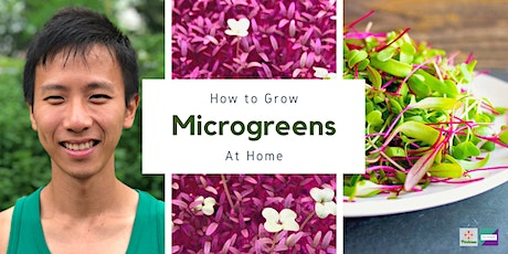 How to Grow Microgreens at Home tickets