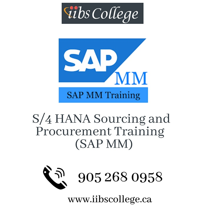 SAP S/4 HANA Sourcing and Procurement (SAP MM) Certification Training image