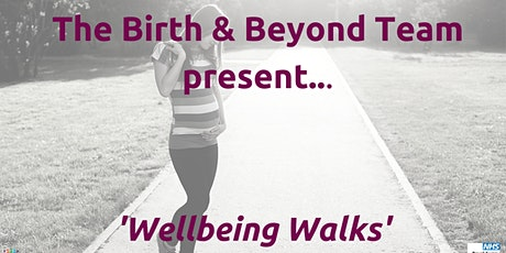 Wellbeing Walk Forest & Haslemere( pregnant people due Oct/Nov/Dec) tickets