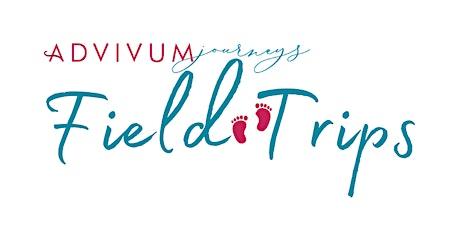 Hope - tender or audacious?  Virtual Field Trip tickets