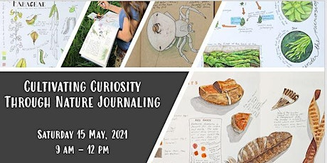 Cultivating Curiosity Through Nature Journaling with Bethan Burton tickets