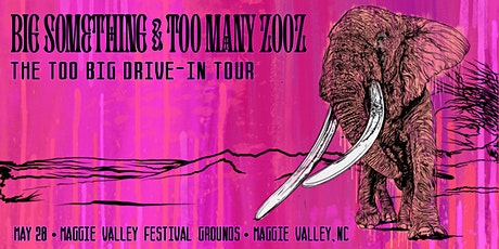 Big Something + Too Many Zooz: Drive-In at Maggie Valley Festival Grounds tickets