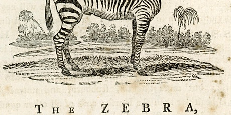 Bewick Society Zoom, talk by Dr Graham Rowe. tickets