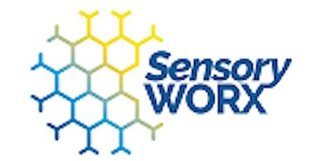 Sensory: Understanding & Recognising tickets