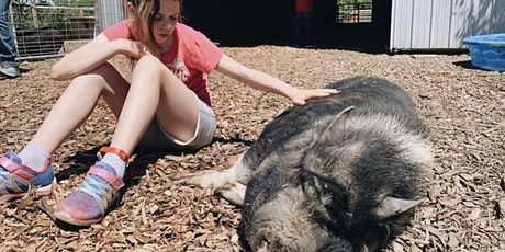 Summer Day Camp with Olivia  at Oinking Acres tickets