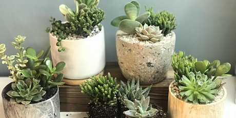 the flower shed's  Outdoor Succulent Planting Workshop @ R Dee Winery tickets