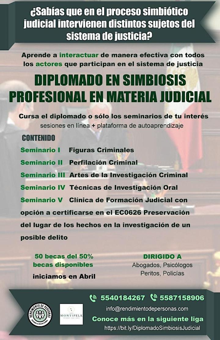Imagen de Diplomado en Simbiosis Profesional en Materia Judicial