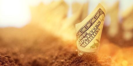 Abundance & Money Light Language Healing Webinar tickets