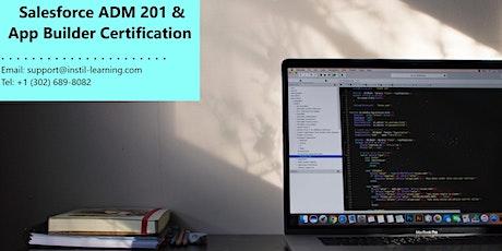 Salesforce Admin 201 and App Builder Training In Destin, FL tickets
