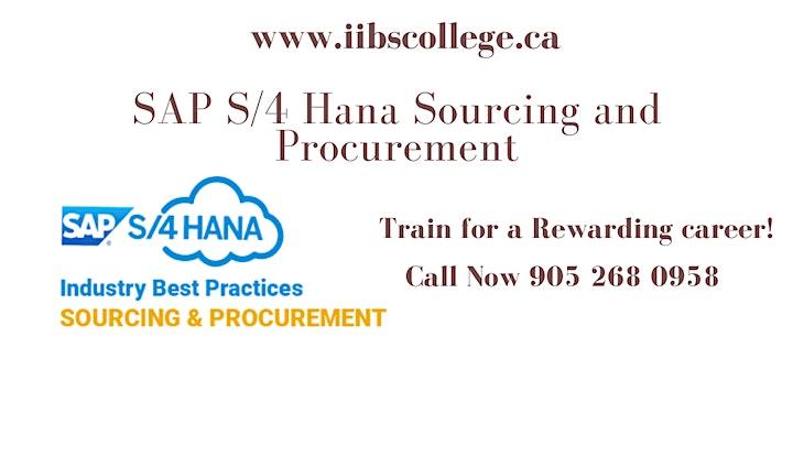 SAP S/4 HANA Sourcing and Procurement (SAP MM) Certification!! image