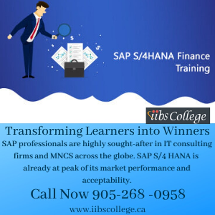 SAP S/4 HANA Finance Training from North American SAP Consultant image