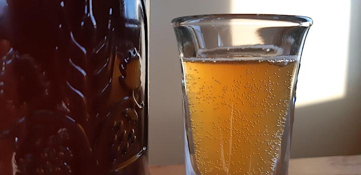 KOMBUCHA + other fermented drinks image