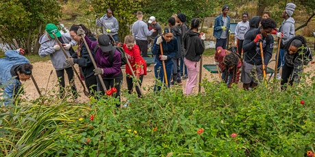 May 22 Volunteer Event at Kenilworth Aquatic Gardens tickets