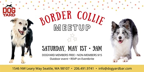 Border Collie Meetup at the Dog Yard tickets