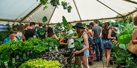 Canberra - Huge Indoor Plant Warehouse Sale - Foliage Fiesta tickets