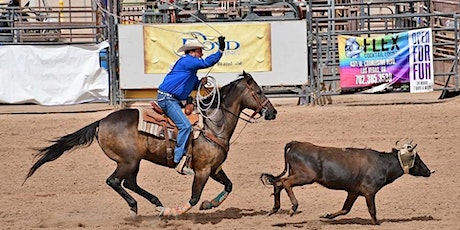 2021 BigHorn Rodeo tickets