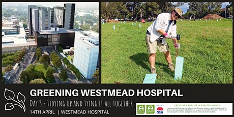 Greening Westmead Hospital - Planting stage 3 tickets