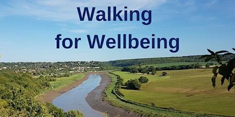 Walking for Wellbeing - Little Stoke Park tickets