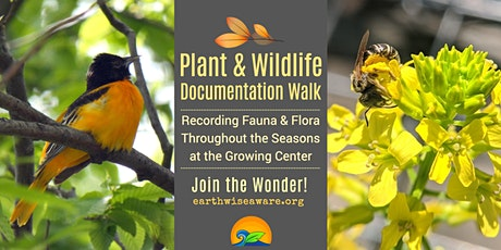 Plant & Wildlife Documentation Walk tickets