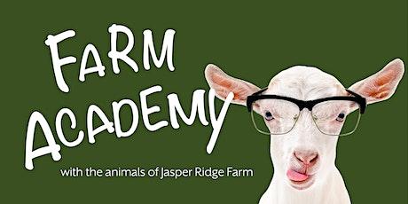 Farm Academy: Horse Basics 2 - Tack & Beginner Riding Instruction tickets