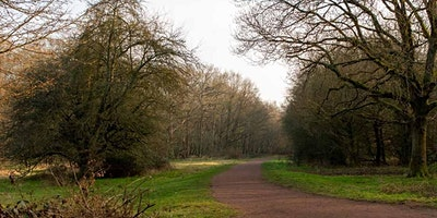 Epping Forest - Beginners Walkers